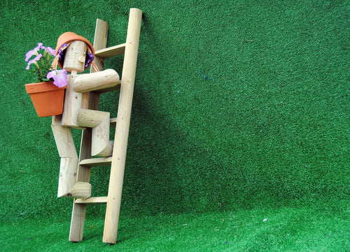 Girl or boy climbing a ladder