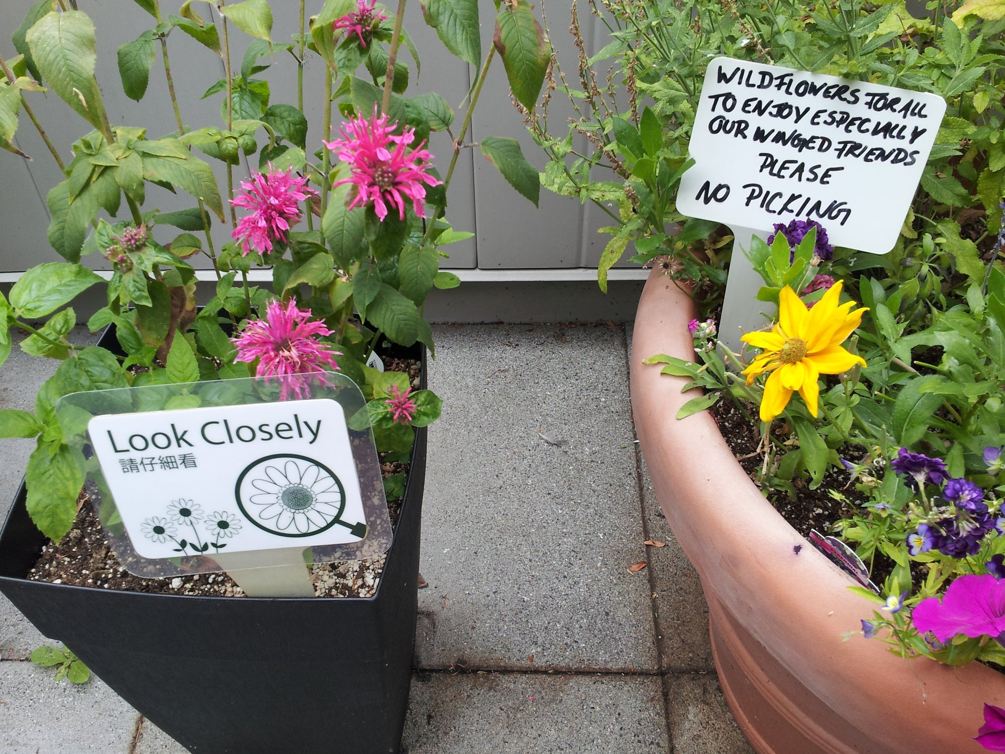 Garden Signs: Make Them or Buy Them?