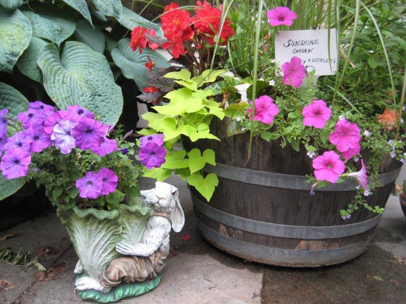 10 Signs to Engage your Garden Visitors
