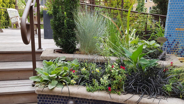 Therapeutic Terrace Garden at Legacy Health