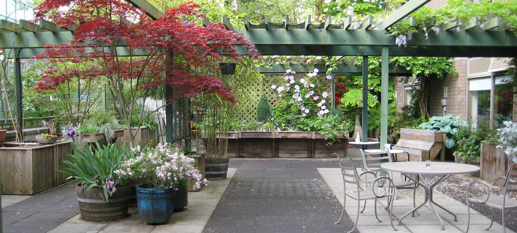 Banfield Pavilion long-term care home garden patio