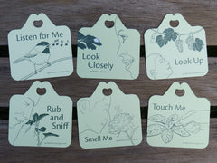 Set of 6 sensory garden hang tags