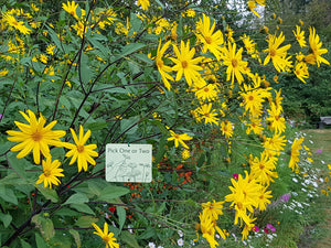6 Attachable Gardening Signs