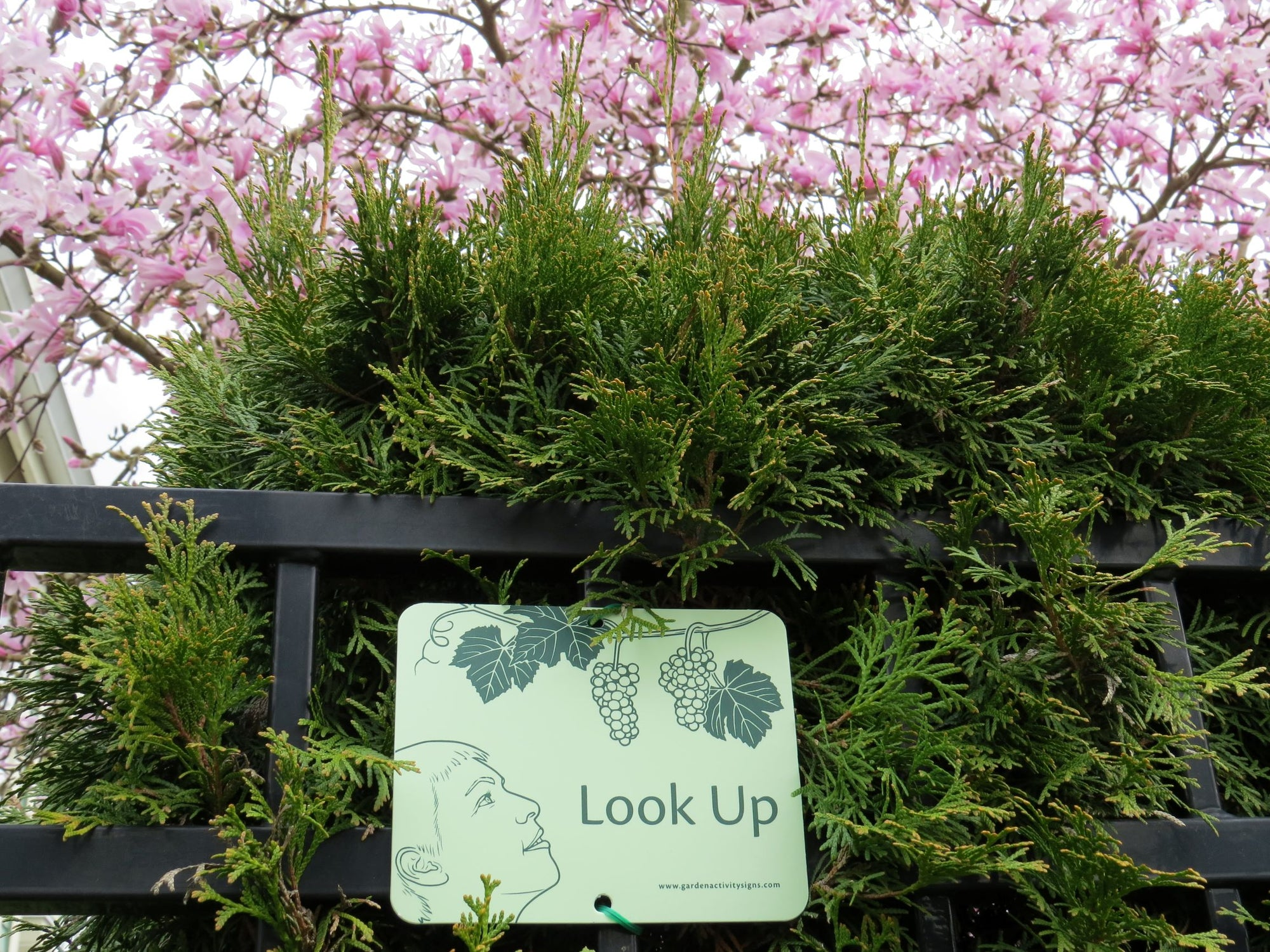 6 Attachable Sensory Garden Signs