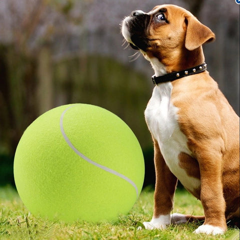 The Big Ruff'n Tennis Ball