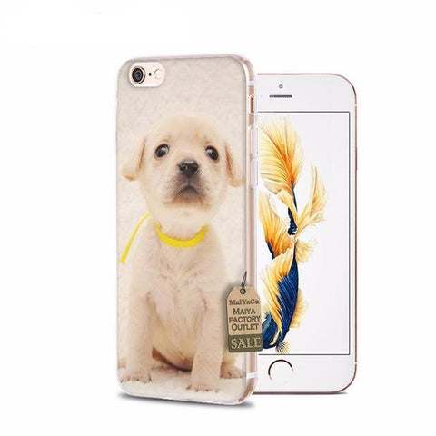 Curious Puppy iPhone Cases