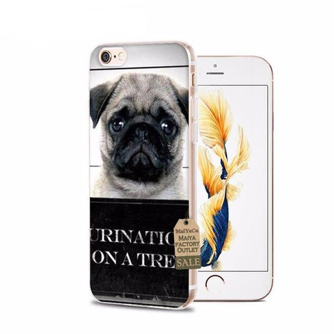 Mugshot Pug iPhone Cases