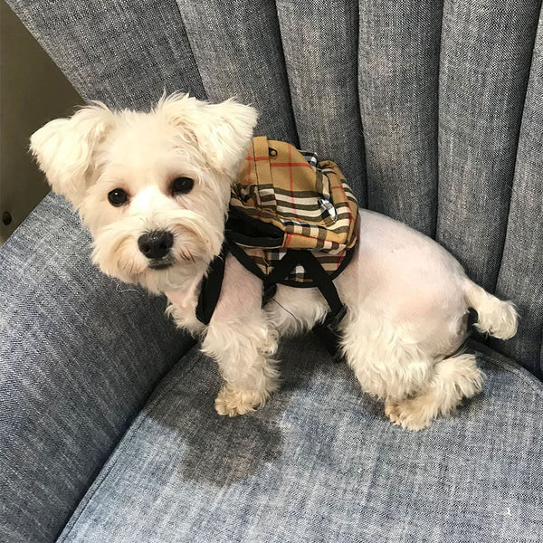 Furberry Dog Backpack Harness