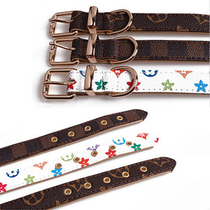 LV Fashion Dog Collar & Leash