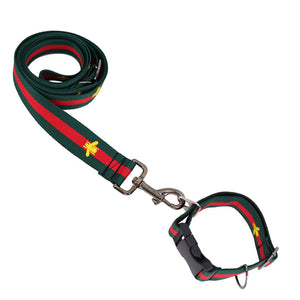 Cucci Fashion Dog Collar & Leash