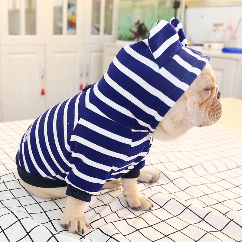 Striped Dog Hoodie
