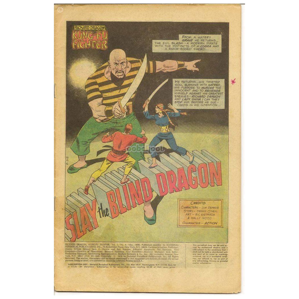Richard Dragon: Kung Fu Fighter / Slay The Blind Dragon #8 May 1976 Vintage Comic Book Books