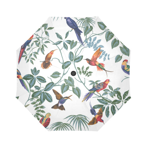 Aviary Automatic Foldable Umbrella