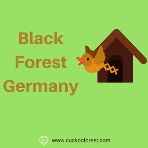 10 Must Do's in Black Forest Germany [Infographic] 2018