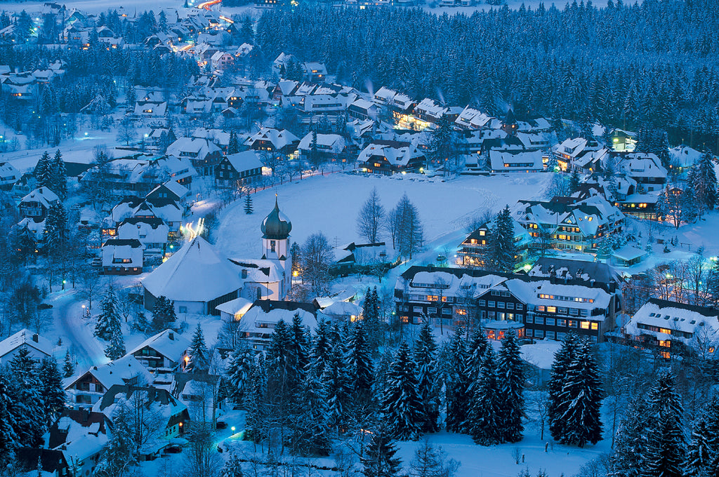 Image result for Black Forest germany in winter