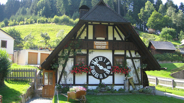 cuckoo clock black forest german schonach