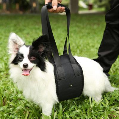 Dog Support Mobility Harness