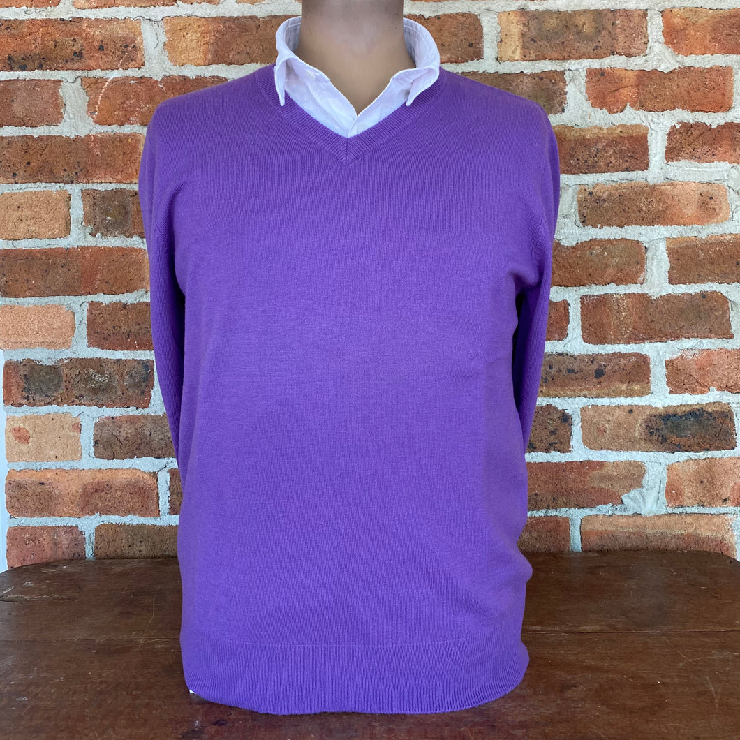 Men's Classic Vee Neck by Bridge and Lord - Purple