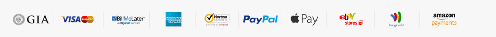 payment apple pay ebay amazon paypal visa