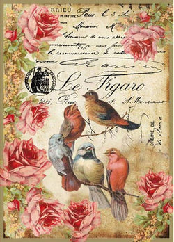 LE FIGARO BIRDS Rice Paper by Stamperia (A4) - Rustic Farmhouse Charm