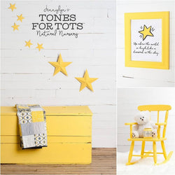 LITTLE STAR Fusion™ Mineral Paint - Rustic Farmhouse Charm