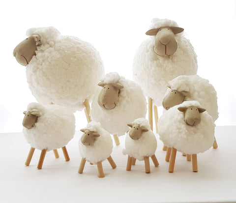 Miniature Sheep Models