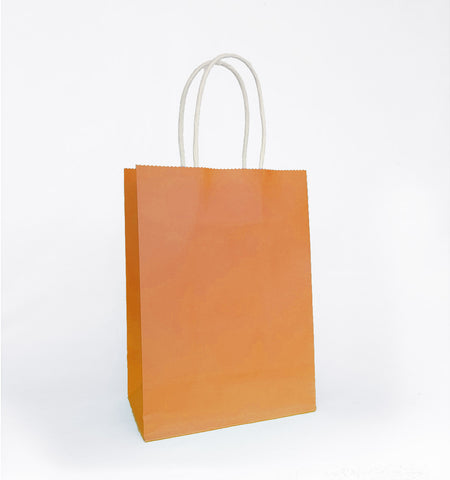 Plain Orange Paper Bag