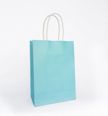 Plain Sky Blue Paper Bag