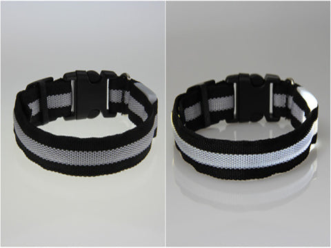 LED PET Collar Flashing Light Up Nylon Night Safety Collars