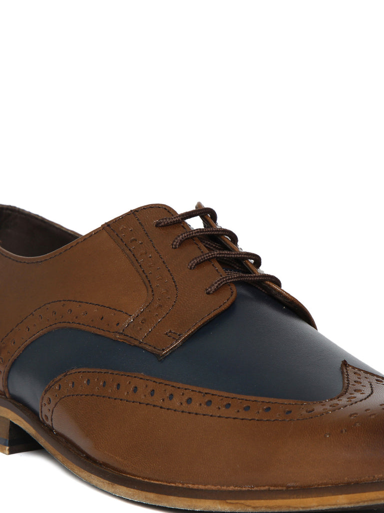 San Frissco Men Brown & Navy Formal Brogues