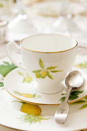 Jenny Mein Caribbean Garden Bone China Collection Cup and Saucer