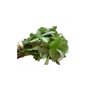 Fresh Oha Leaves  x 1 bunch