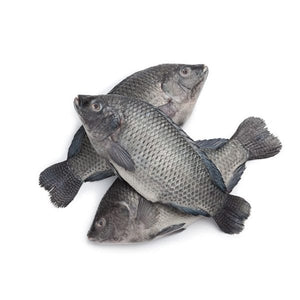 Tilapia Fish Whole(Uncut)