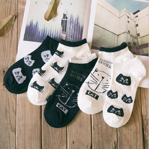 MOONBIFFY CAT Cotton Fiber  Socks ( Random Color )