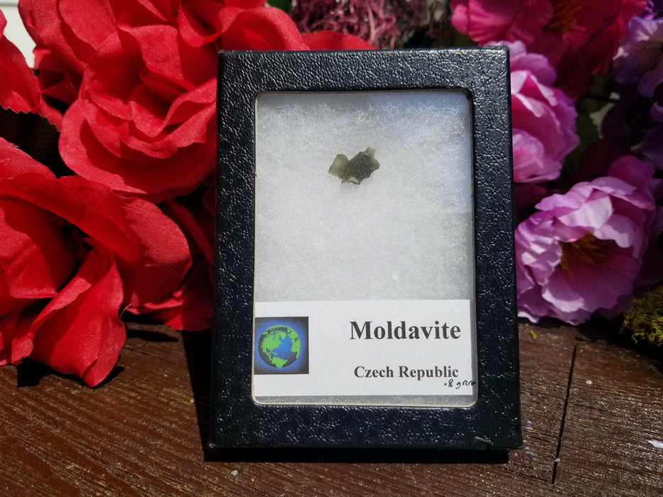 Moldavite 0.8 G - The Nevermore Coven