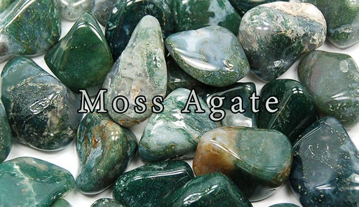 Moss Agate Tumbled Gemstones - The Nevermore Coven