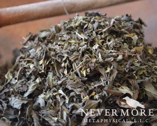 Spearmint Dried Leaves - The Nevermore Coven