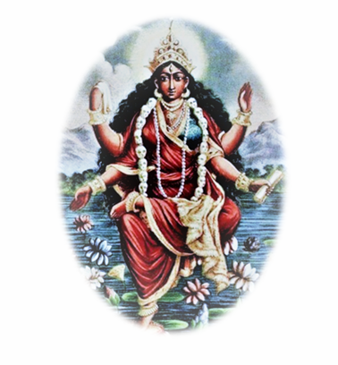 Goddess Bhairavi Homam Shared