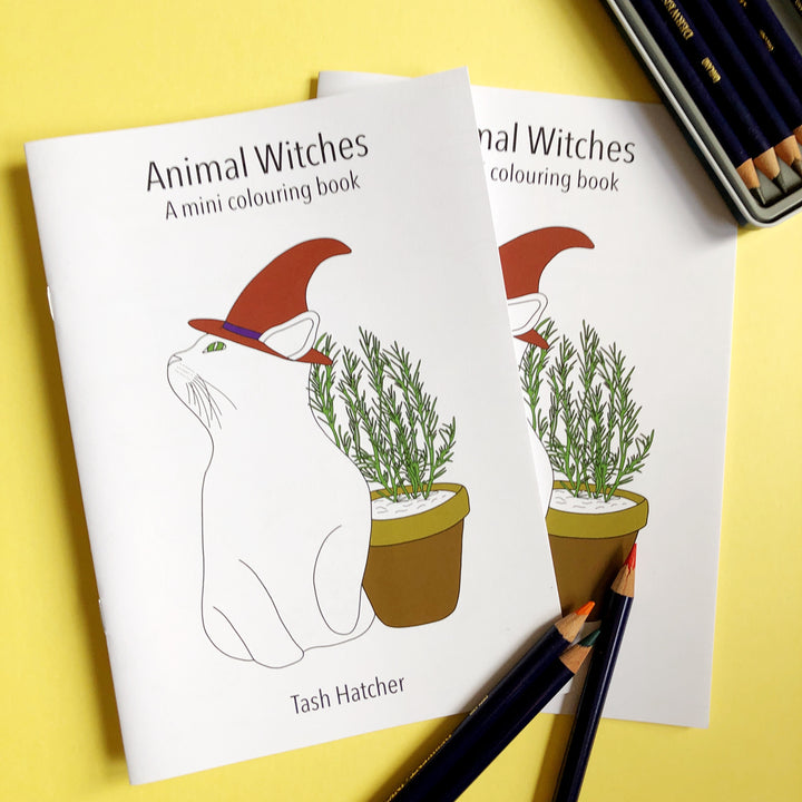 Animal Witches Colouring Book Flipthrough