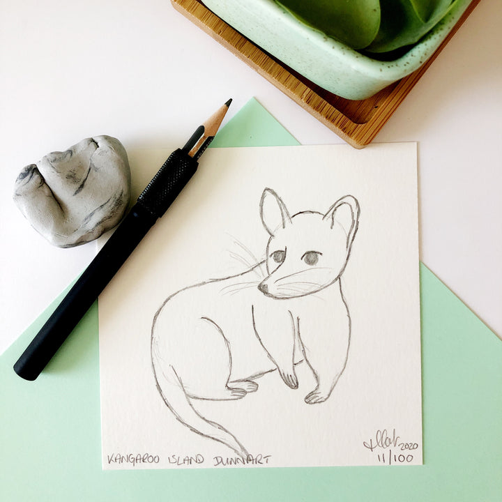 100 Day Project: Kangaroo Island Dunnart