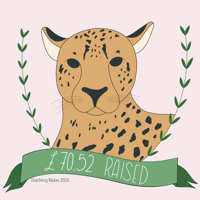 Cheetah Conservation Fund GRAND TOTAL