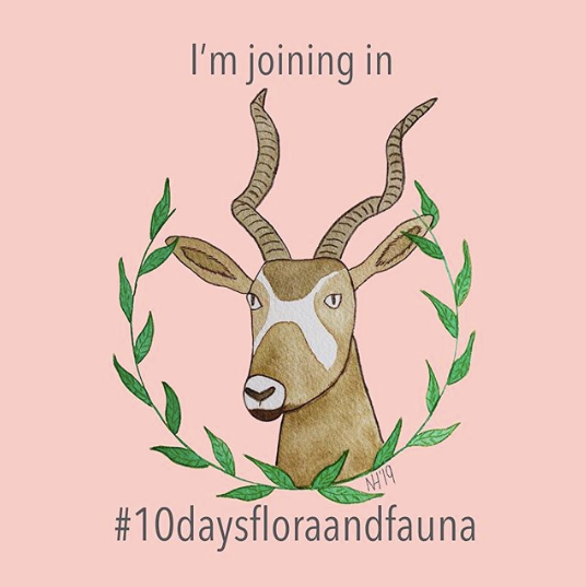 10 Days of Flora and Fauna