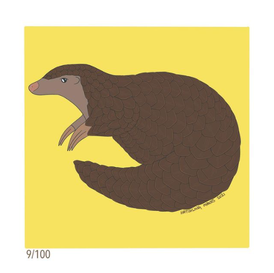 100 Day Project Day 9 (Chinese Pangolin)