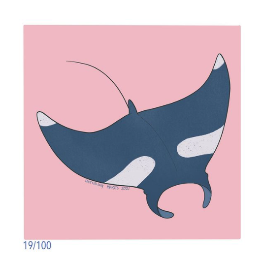 100 Day Project Day 19 (Giant Manta Ray)