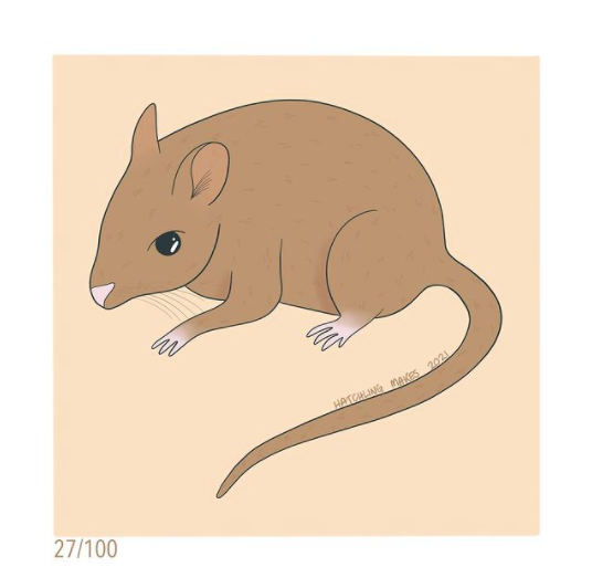 100 Day Project Day 27: Central Rock Rat