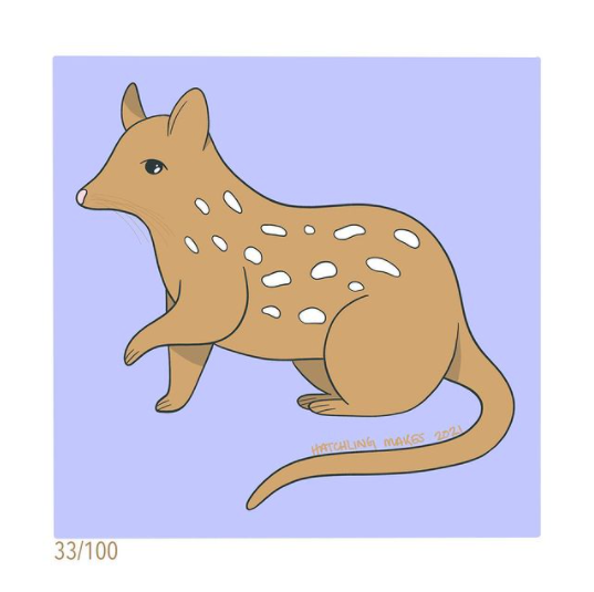 100 Day Project Day 33: Eastern Quoll