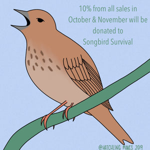 October & November Charity : Songbird Survival