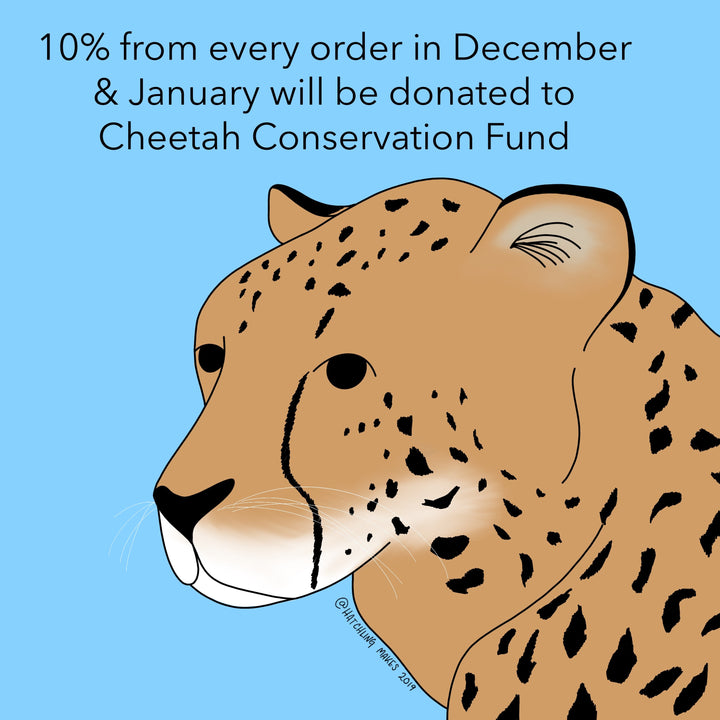 December Charity : Cheetah Conservation Fund