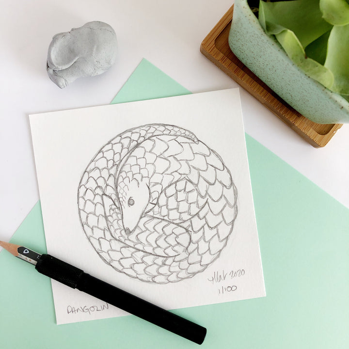 100 Day Project: Pangolin