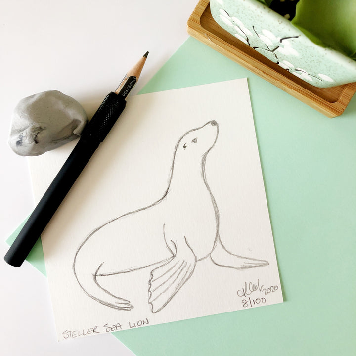 100 Day Project: Steller Sea Lion
